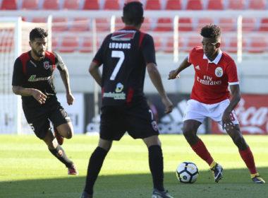 Benfica B vs Leixões Soccer Prediction